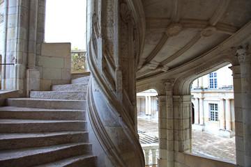 Francia,castello di Blois,scale.