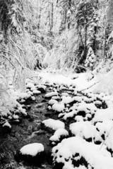 Neige et cours d'eau