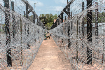 Barb Wire Fence with guard and watchdog - Prison