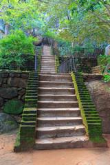 Stairs in old Sigiriya Castle
