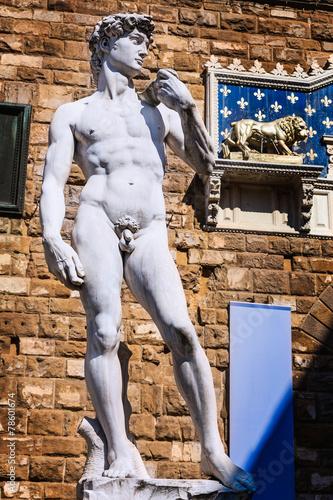 Rzeźba Dawida Michała Anioła, Florencja, Włochy