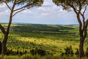 PRIMAVERA,Parco Alta Murgia;vista panoramica.ITALIA(Puglia)