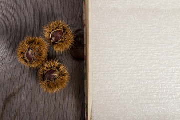 Chestnuts and open Book on Wooden Background
