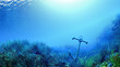 Leinwanddruck Bild - sous la mer ancre