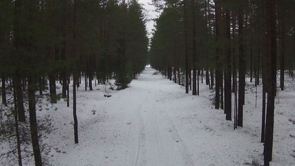 Flying Above Road in Winter Forest, aerial view
