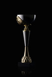 Cup. Golden cup of the winner on black background