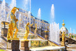 Leinwanddruck Bild - Grand Cascade in Peterhof Palace, St Petersburg