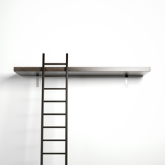 Ladder and wooden shelf