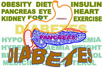 diabetes related keyword icon with pancreas and stomach