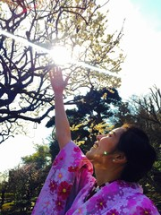 girl reach for the sakura branch