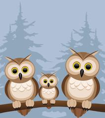 Vector illustration. Owls.