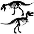 T rex skeleton - 78615461