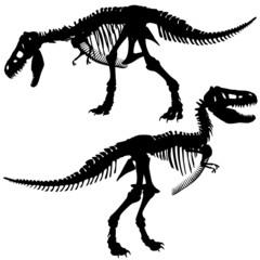 T rex skeleton
