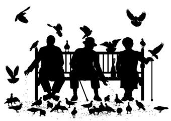 Pigeon feeders