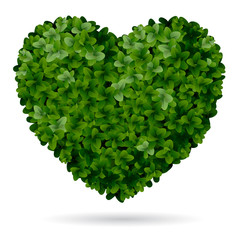 Foliage heart, symbol of love for nature.