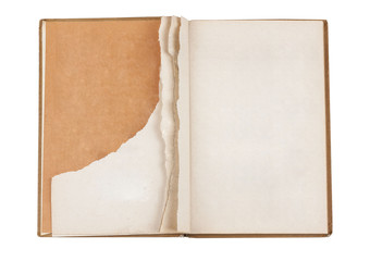 Torn book page