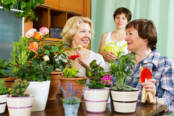 mature women  and girl with many flowerpots