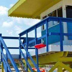 Lifeguard rescue can