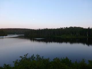 Lake and woods