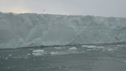 Sailing along a glacier reaching the sea 2