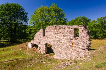 Alun factory building ruins on Oland island