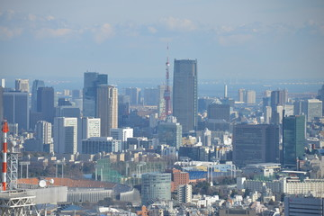 Great view over Tokyo