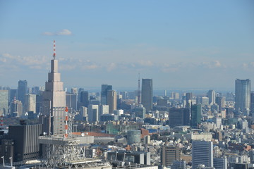 View over Tokyo city
