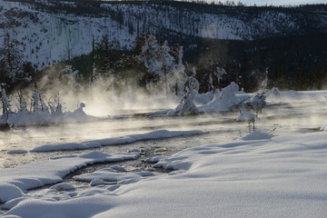 Steaming river in winter