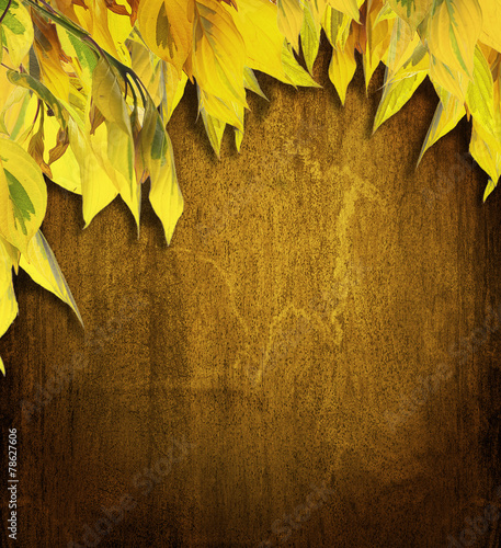 autumn background with  autumn leaves and dark brown wooden