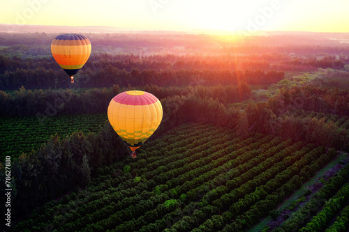 Hot air balloons over countryside. - 78627880