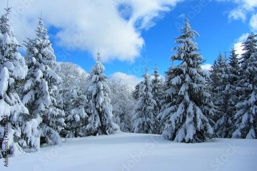 Foto op Canvas Alpen Paysage enneigé