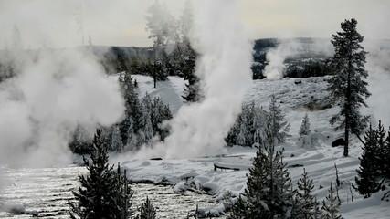 Fumaroles in winter