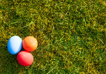 Easter eggs on green meadow