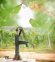 Old Hand water pump in the vineyard
