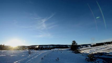 Winter landscaper