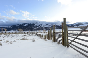 Fence in snowy landscape
