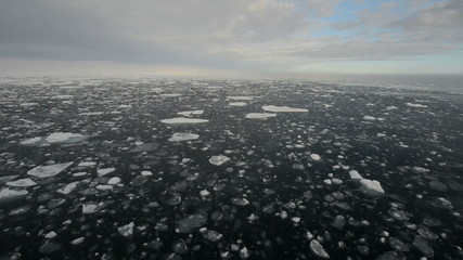 Ice cakes floating on a dark sea