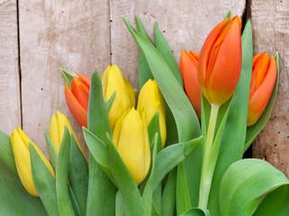 tulipes oranges et jaunes sur fond bois