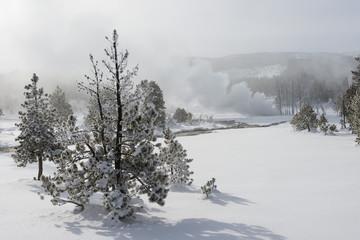 Snowy landscape with fumaroles