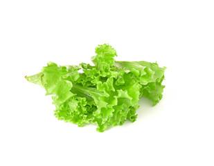 lettuce salad on a white background