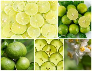 lemon group set