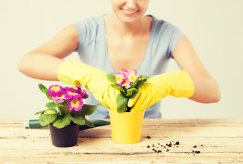 housewife with flower in pot and gardening set