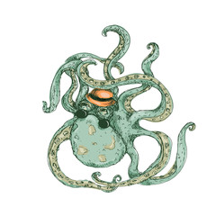 Hipster Octopus Color