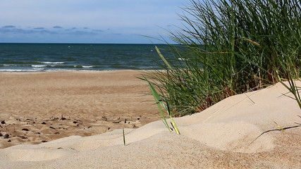 Sea, beach, and grass on the sand dune