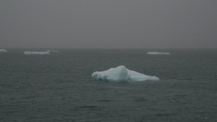 Small icebergs floating on the sea