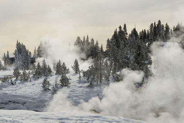Steaming geyser in winter