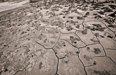 Cracks in the dried bottom of the sea