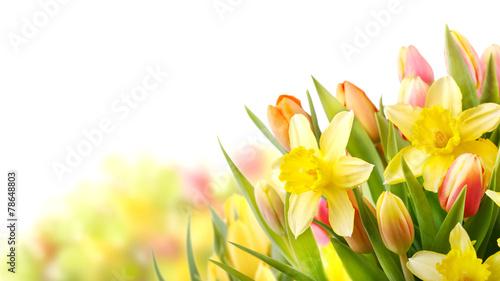 Aluminium Narcis Freisteller Tulpen und Narzissen zu Ostern