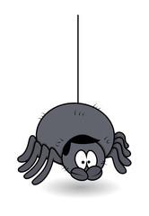 Funny Male Spider - Halloween Vector Illustration