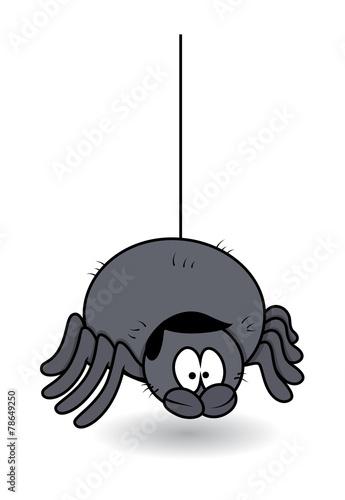 Funny Male Spider - Halloween Vector Illustration - 78649250